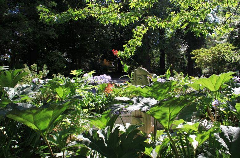 El Jardín Botánico de Caldas de Reis