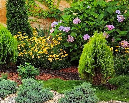 La jardinería ecológica florece con éxito