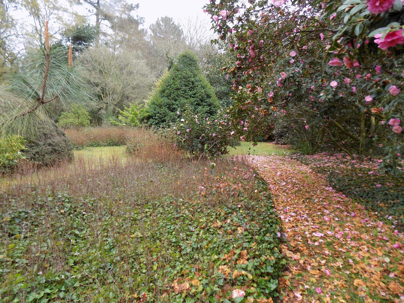 El jardín del Pazo de La Saleta