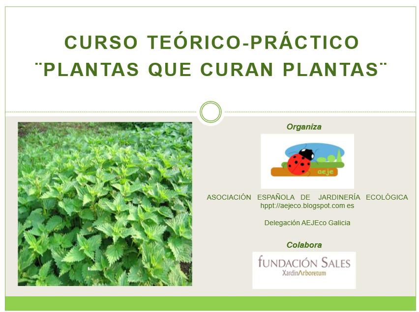 """Curso """"plantas que curan plantas"""""""